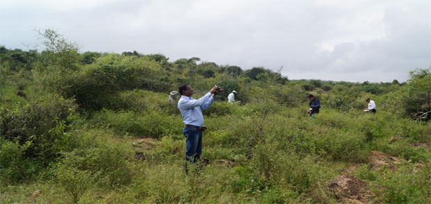 Geological and Radiometric Survey in field area